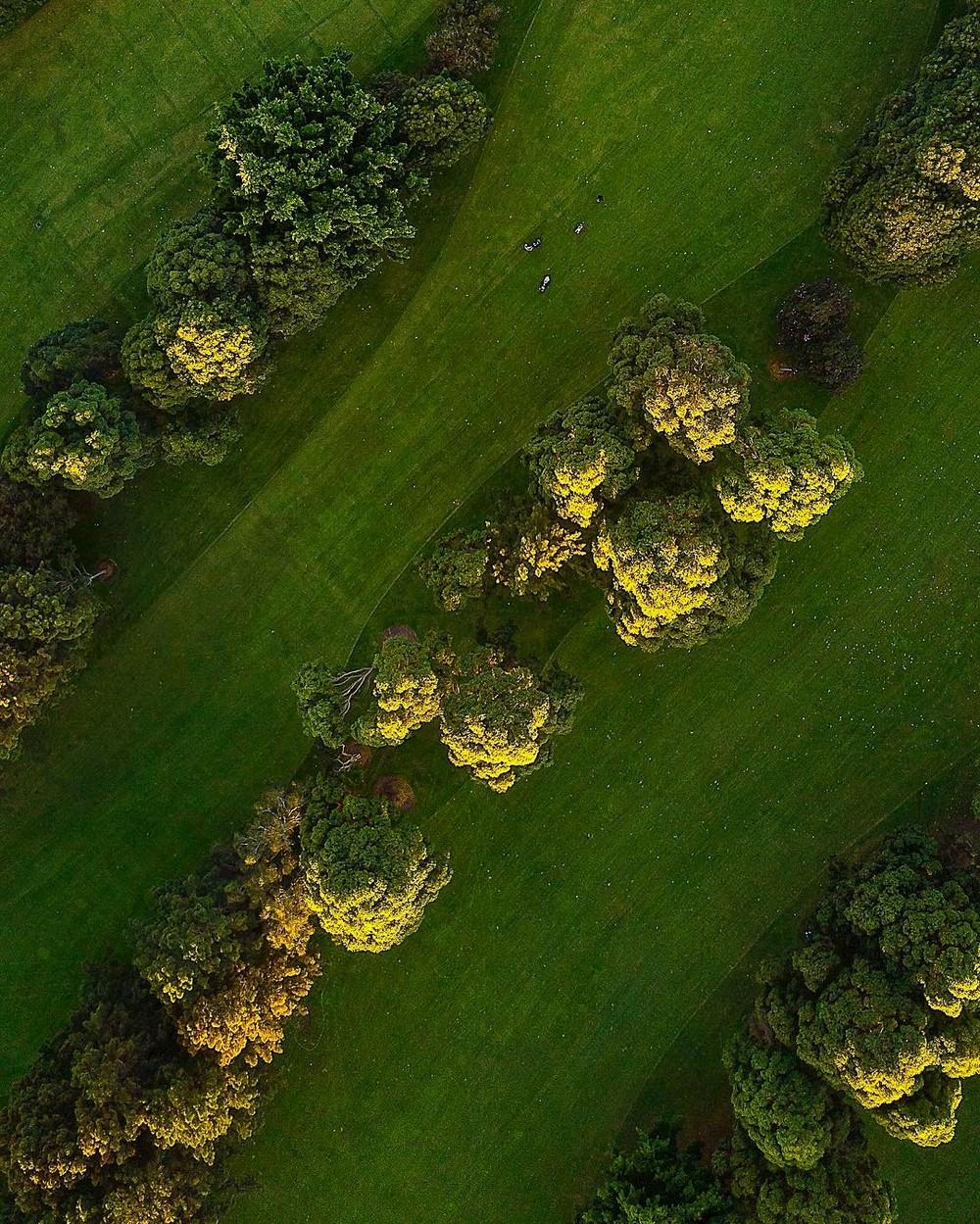 Захватывающие аэрофотографии Маурицио Бакки