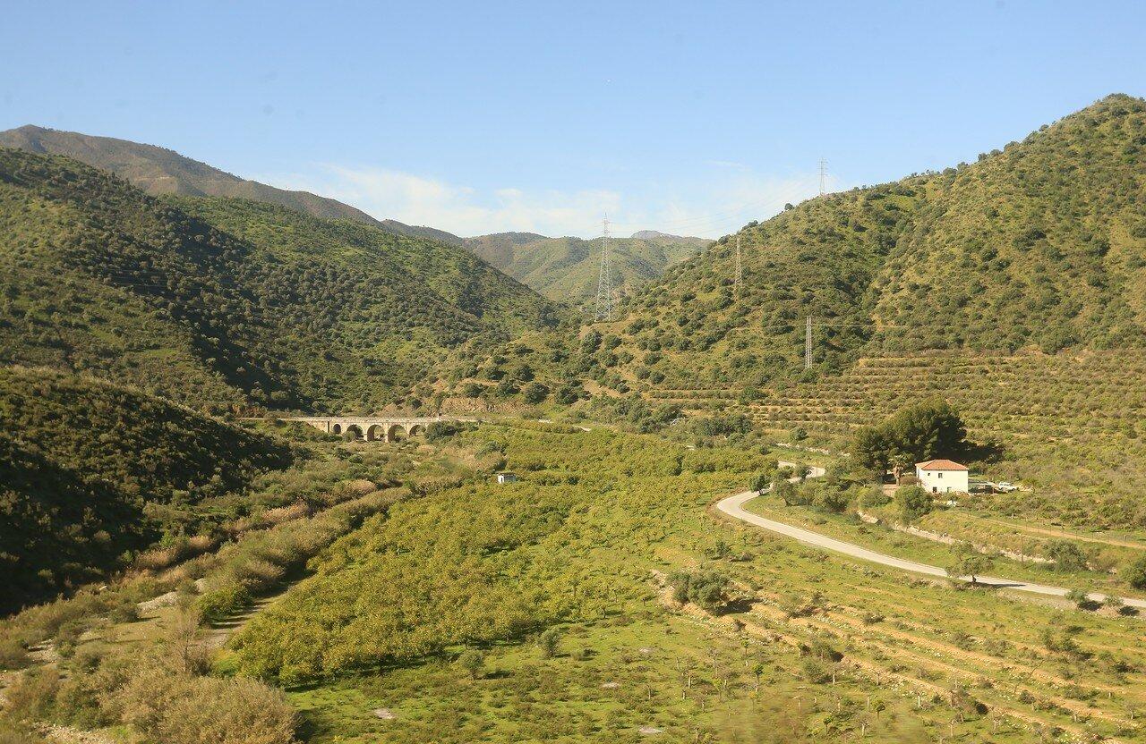 Valley Guadalete
