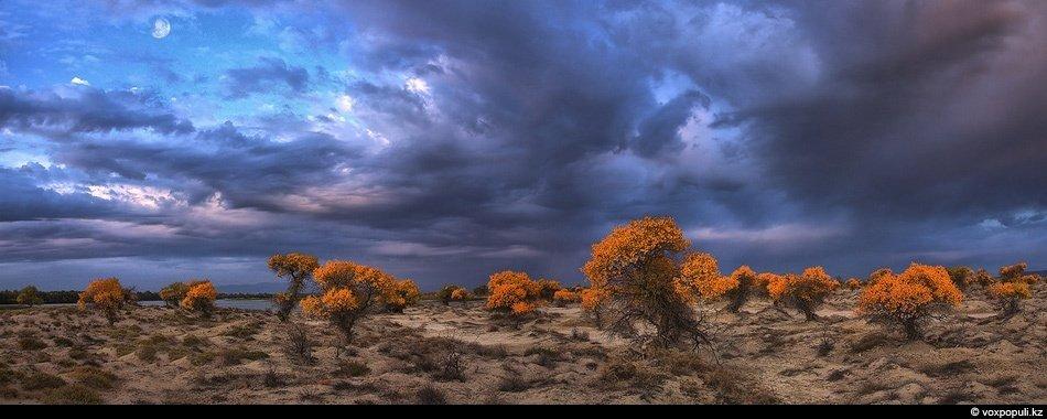 Заповедник Алтын Емель. Белые горы на фоне циклона похожи на другую планету: