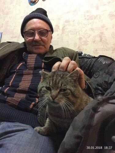 Два котяры на отдыхе