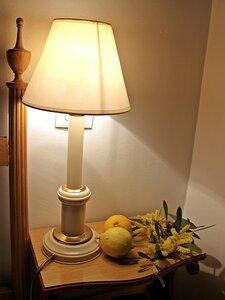 Лимоны и мимоза из зимней Португалии