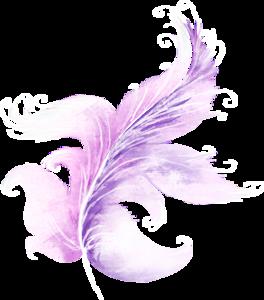 Перышки розовые