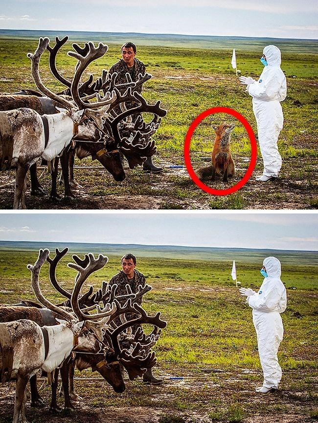 © eastnews  © depositphotos  Оригинальная фотография сделана впериод борьбы ссибирской