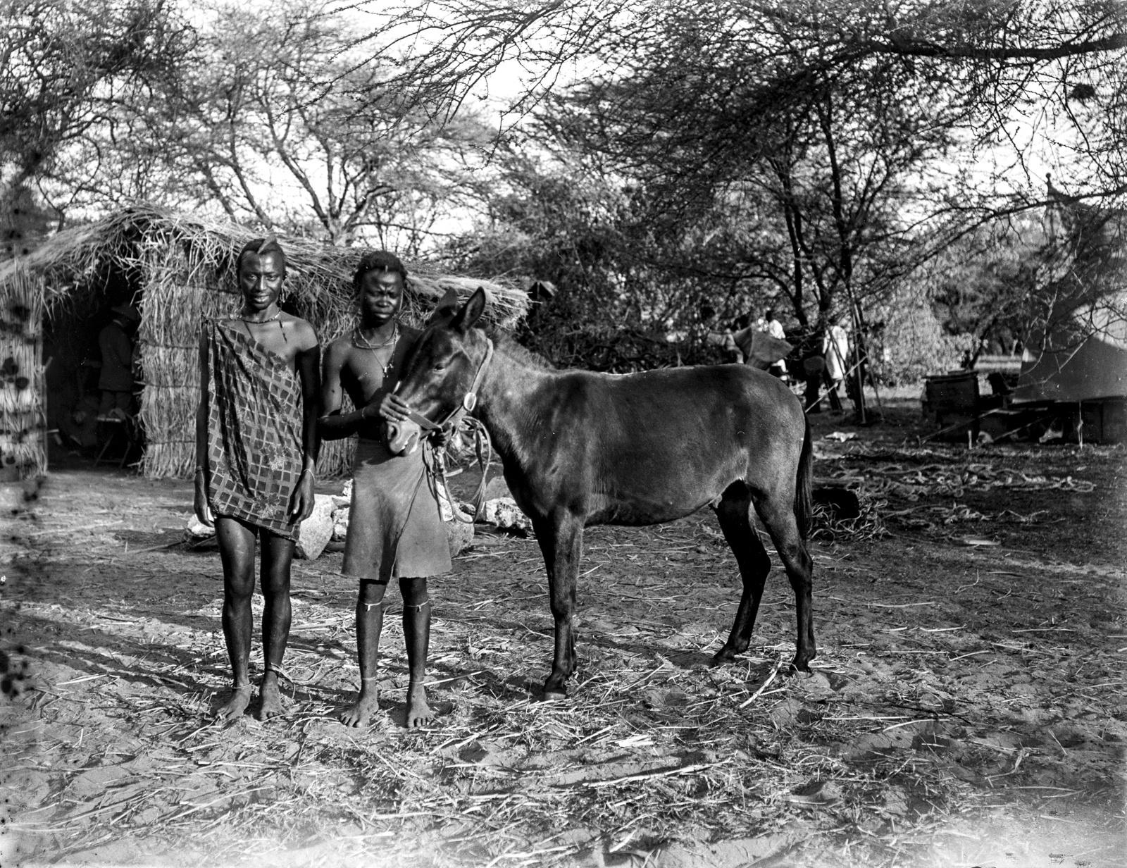 239. Два аборигена с мулом