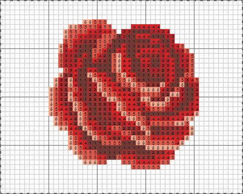 Роза монетница.jpg