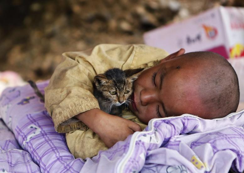 мальчик и котенок спят улица
