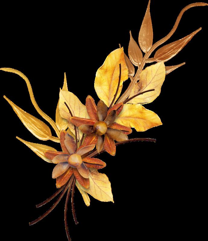 Carena_Autumn Crunch_37.png