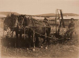 Испытание жатвенной машины Континенталь (завода Джонстон) на опытном поле.