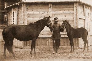 Кобылица с жеребенком из табунов И. И. Бакшеева.