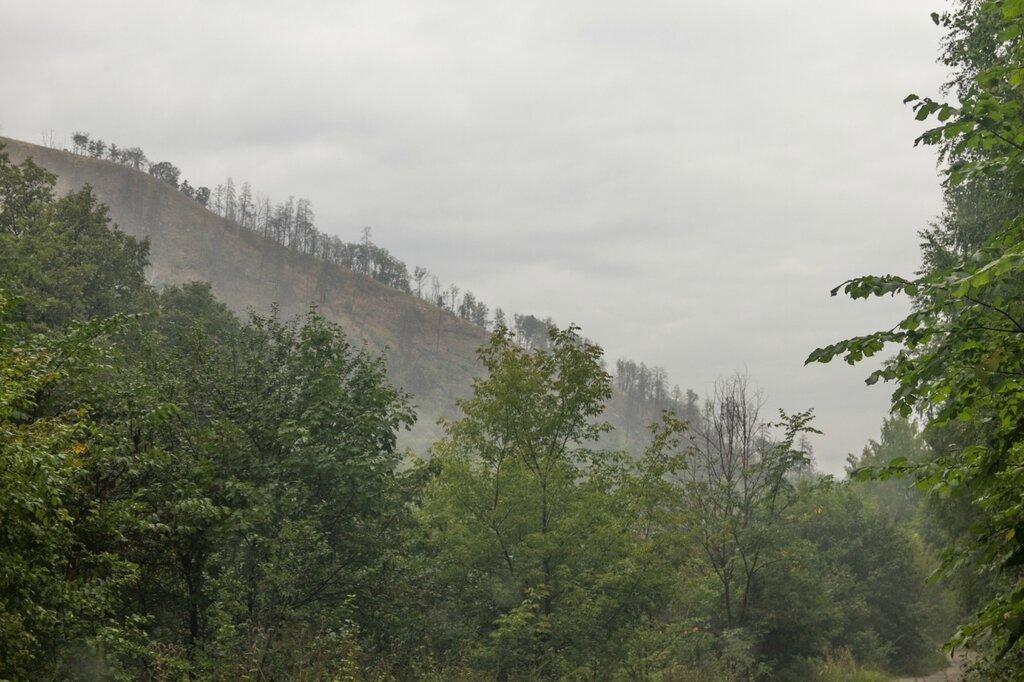 Склон горы, Жигулевский заповедник