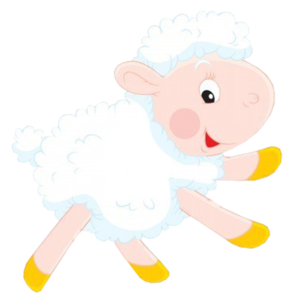 Козы, овцы, бараны