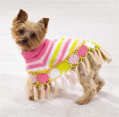 Battersea Dogs Home Knitting Pattern Dog Coat : ?????? ??? ????? ?????? ??????   ????? ? ???????? ??? ????? ??? - ???? ????...