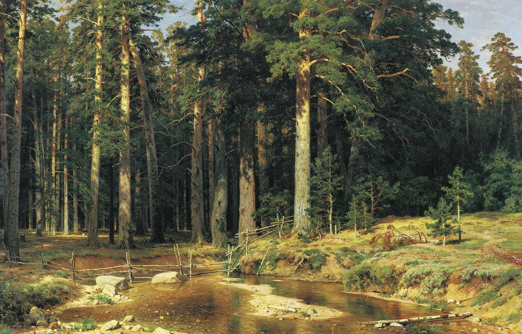 0912.Shishkin.Ivan.Korabel'naia.rosha.1898.holst.maslo.165h252.sm.jpg