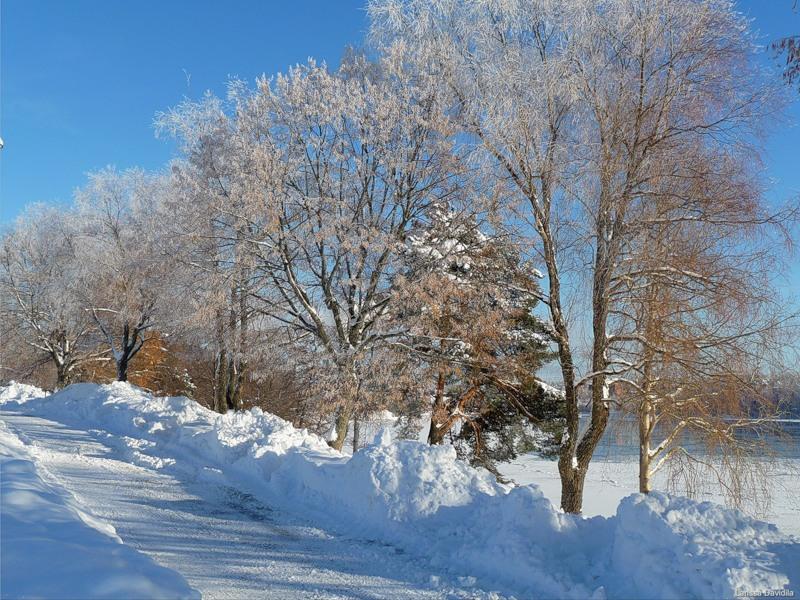 Южная Финляндия, город Куусанкоски в солнечный день февраля