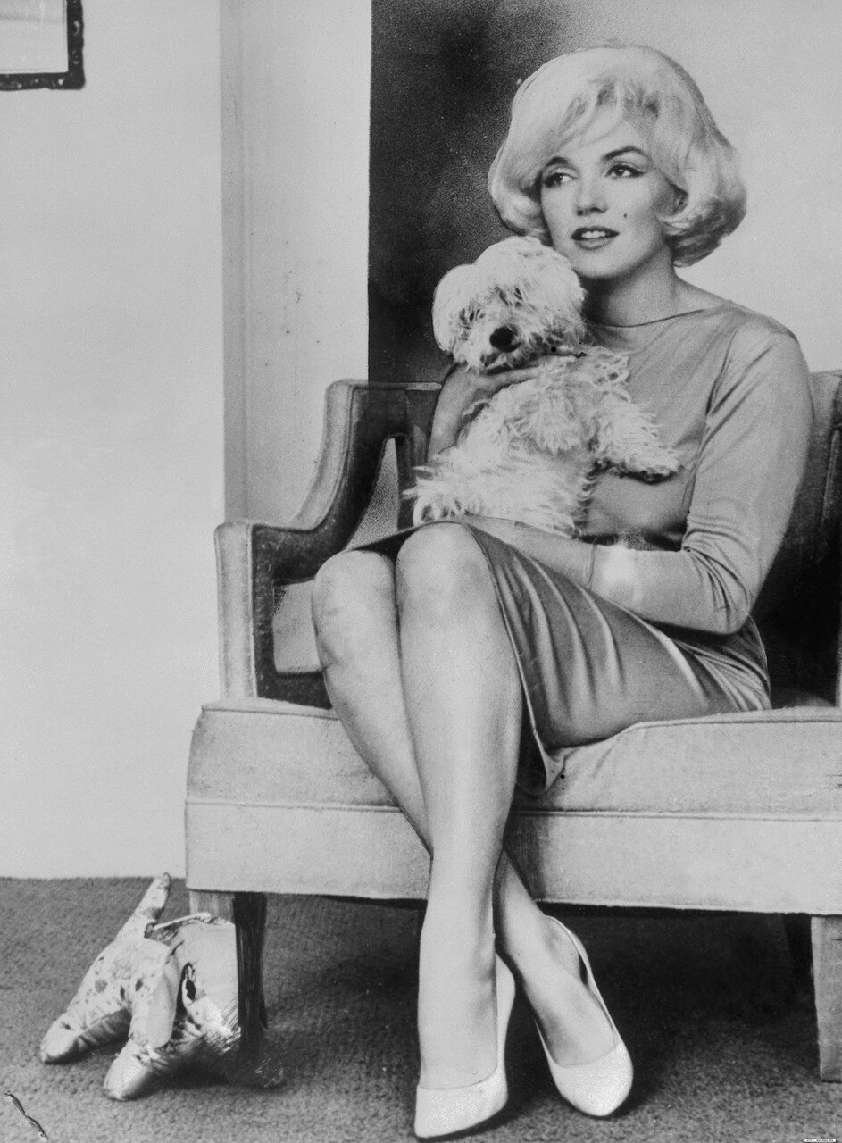 Actress Marilyn Monroe Holding Dog