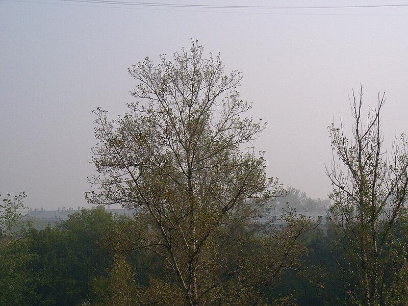 Дым пожаров над Москвой, 2 августа, Лефортово