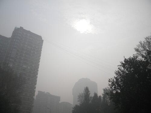 Лето 2010.