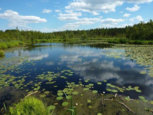 Боевское озеро