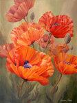 Poppy-Dance.jpg