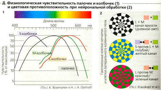 https://img-fotki.yandex.ru/get/510335/158289418.44a/0_17fb39_fe1d4157_XL.jpg