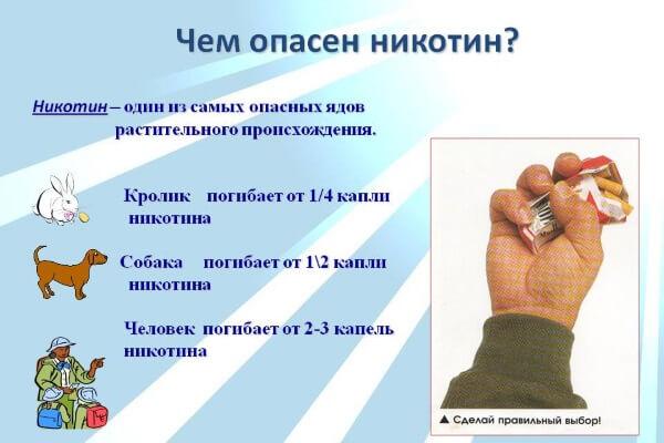 Открытки. Международный день отказа от курения. Чем опасен никотин