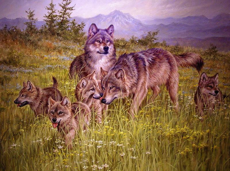 Открытки днем, картинка волк с волчатами для детей