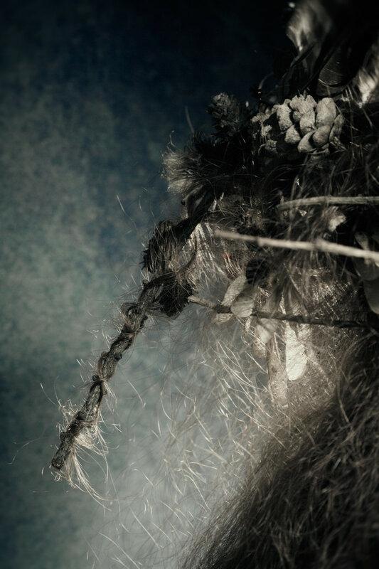 fairy6.jpg