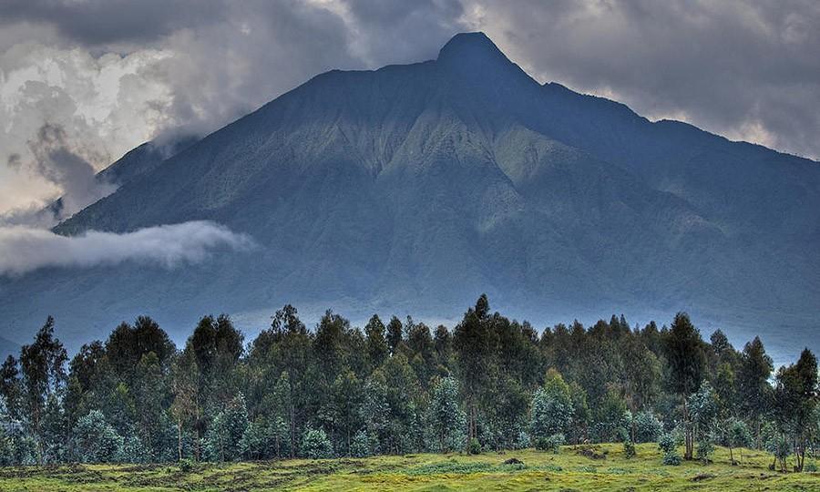 45. Обезьянье сафари, Уганда и Руанда Великие и туманные горы Руанды и Уганды — одно из последних ме
