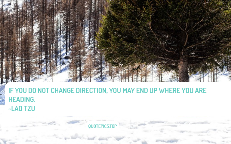 If you do not change direction, you may end up where you are heading. ~Lao Tzu