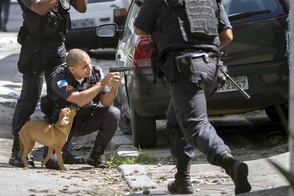 Мужик, бросай страдать фигней. Давай-ка лучше поиграем!: Щенок и полицейские в фавелах Рио-де-Жанейро