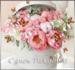 розы розовые открытка.png