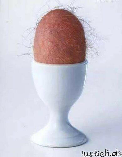 Налог на яйца