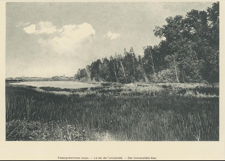 11. Университетское озеро