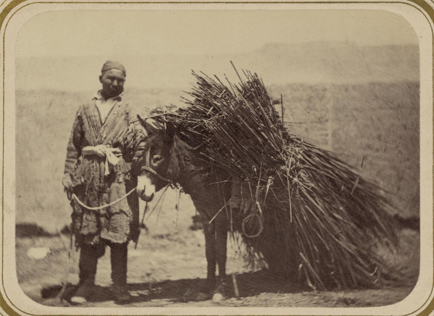 Базарные типы. Продавец травы