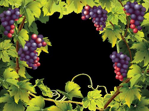 виноград (48).png