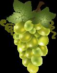 виноград (53).png