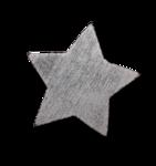 natali_xmas12_star1-sh.png