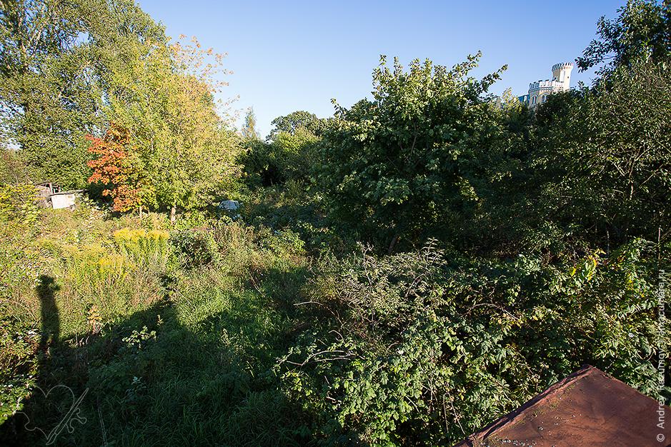 огороды в Стрельне
