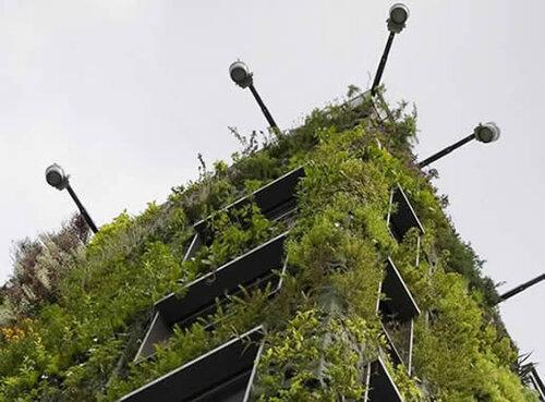 патрик бланк вертикальные сады фото