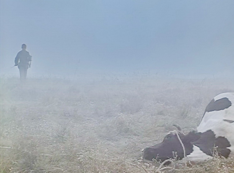 1985 - Иди и смотри (Элем Климов).jpg