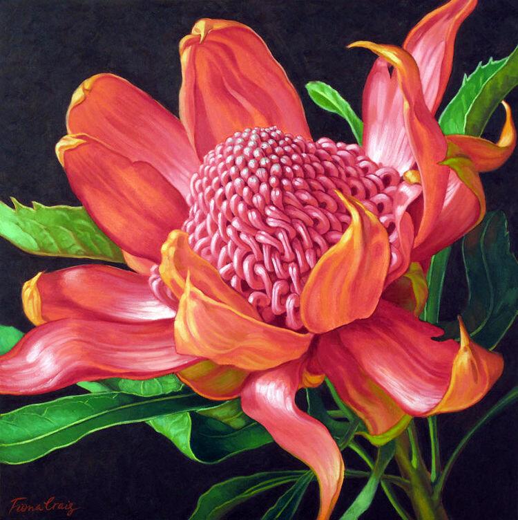Fiona Craig.