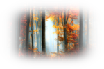 117036026_large_105579202_the_best_days_by_ildiko_neerd5j3prd.png