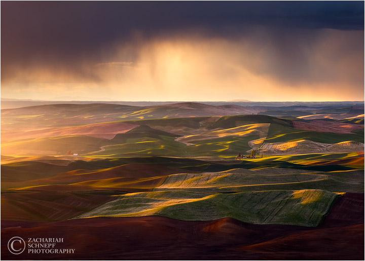 Чудеса природы от Зака Шнепфа (Zack Schnepf)