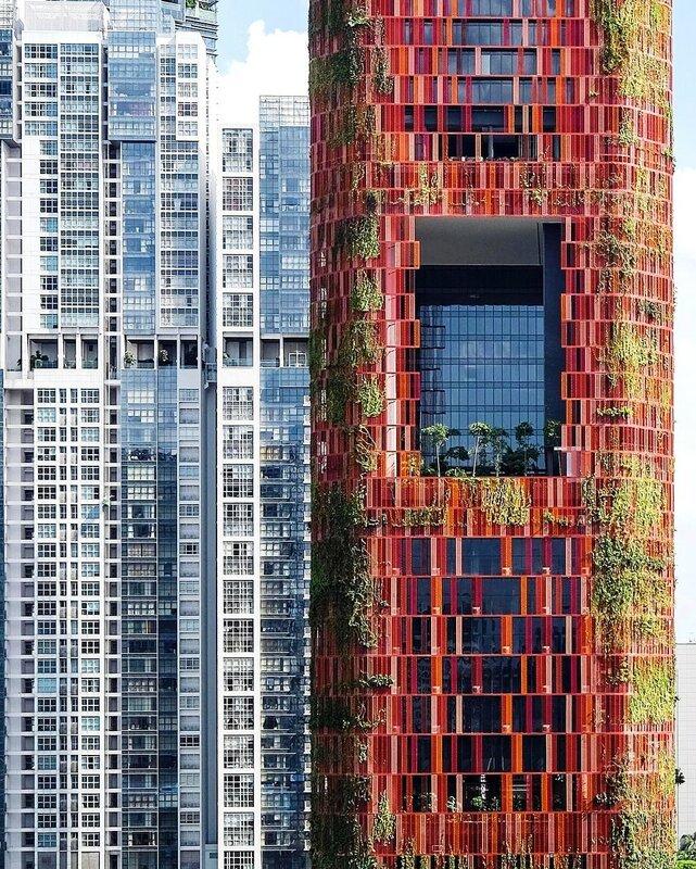 Вертикальное озеленение в Сингапуре