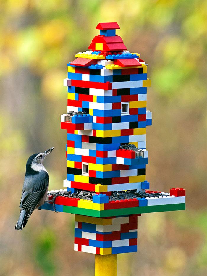 Из кубиков Lego можно сложить кормушку для птиц.