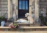 lucinda-dogs-doorstep-1.jpg