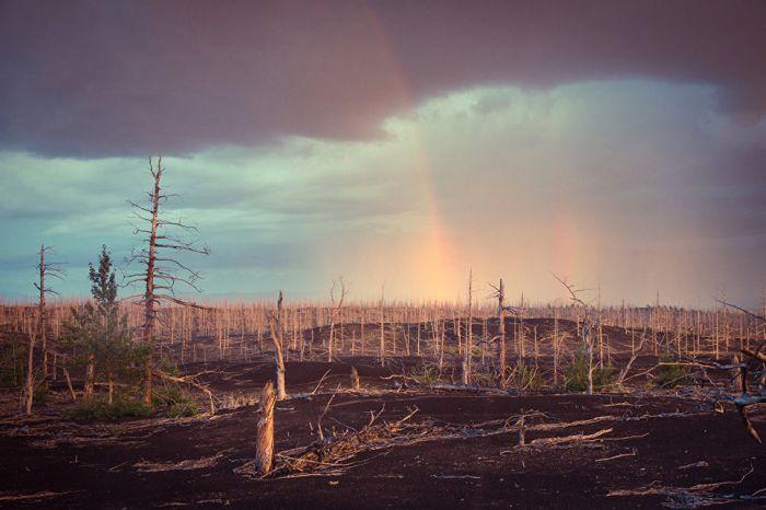 Двойная радуга над лесом, погибшим во время извержения 1975 года.