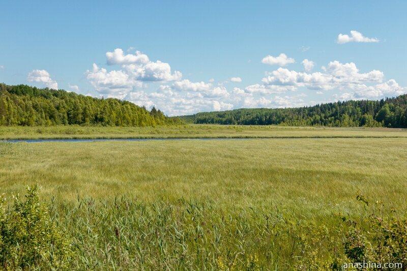 Северные просторы, Вологодская область