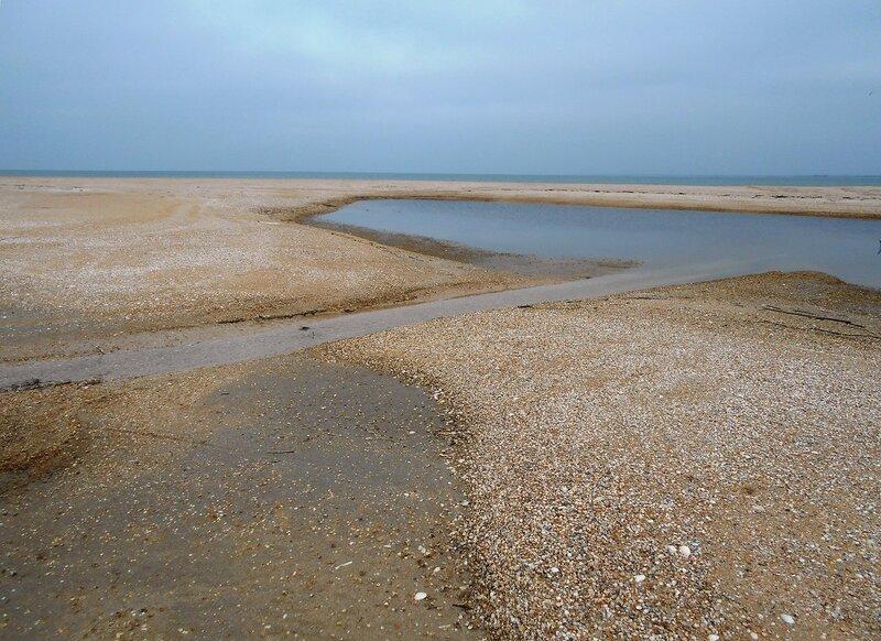 Пески, в февральском варианте ... DSCN4193.JPG