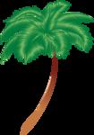 пальмы море (11).png